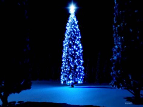 CHRISTMAS TREE-blogspot-131207